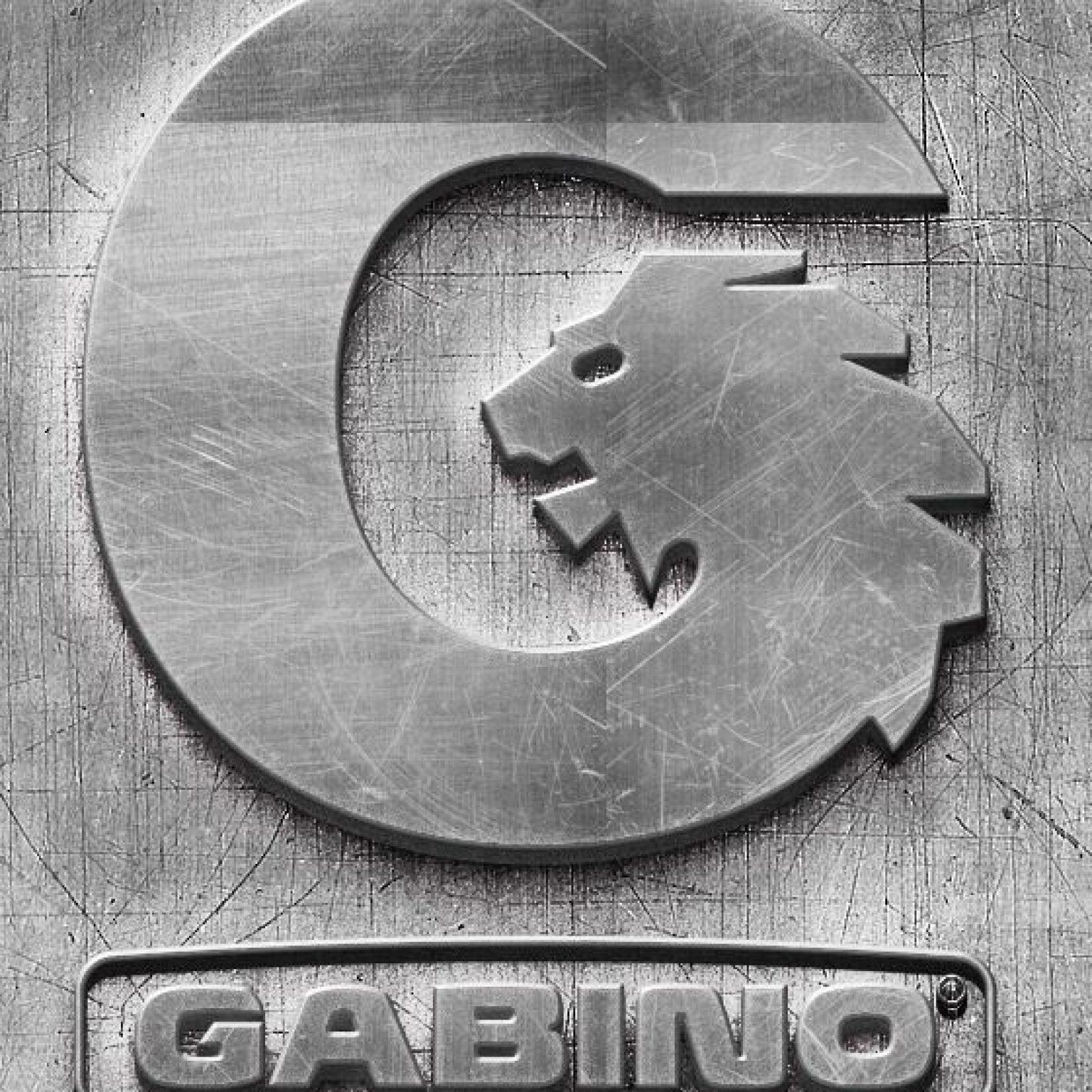 Логотип серый уменьшенный